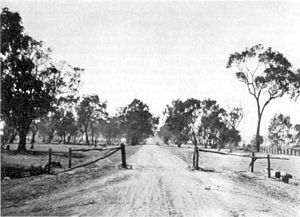 "Hume Highway - A passable section of ""Sydney Road"" in the shire of Benalla, 1914."