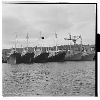 Tønsberg - Whale-catchers in Tønsberg, 1952.