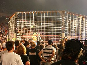 "Vince Russo - TNA's ""electrified"" steel cage match, as seen at Lockdown in 2007"