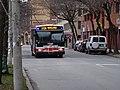 TTC bus 7700 on the Esplanade, 2014 12 28 -f (15974132747).jpg