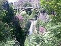 Tbilisi Botanical Garden (1).jpg