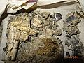 Teile Reliekvie Archäologie über zerstörende Feuer.JPG