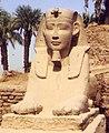 Tempio di Luxor, sfinge andricefala dinanzi all'entrata.jpg