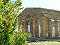 Tempio di Nettuno012.jpg