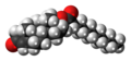 Testosterone undecanoate molecule spacefill.png