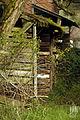 The Back Door (6852676874).jpg