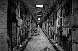 The Crypte.jpg