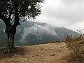 The Monastery of Qozhaya, Kadisha Valley, Lebanon.jpg