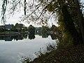 The River Thames, near Old Windsor - geograph.org.uk - 69415.jpg