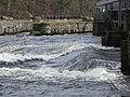 The Salmon Leap (The Cutts), Castleroe, Coleraine. - geograph.org.uk - 1196309.jpg