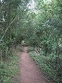 The Severn Way near Highley - geograph.org.uk - 1477551.jpg