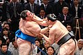 The Sumo Grand Championship (47938170698).jpg