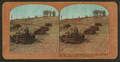 The fire wrecked street cars and once beautiful residence district on California St, from Robert N. Dennis collection of stereoscopic views 2.png