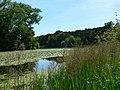 The informal lake - geograph.org.uk - 204738.jpg