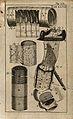 The intestines. Engraving, 1686. Wellcome V0007784EC.jpg