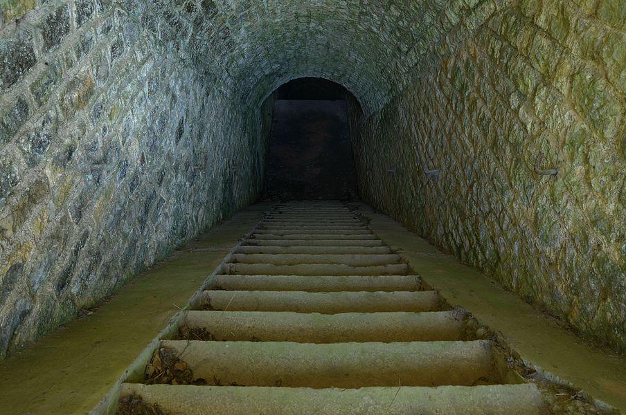 Accès au coffre de contrescarpe Sud-Ouest.  Basses perches fortifications.