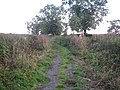Three Points Lane, Finemere Hill 5 - geograph.org.uk - 1278422.jpg