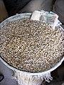 Tibet - 6013 - Tibetan native barley awaiting grinding into tsampa at a Tibet Autonomous Region Grinding Mill.jpg