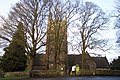 Tower of St Briavels church behind tall trees - geograph.org.uk - 301307.jpg