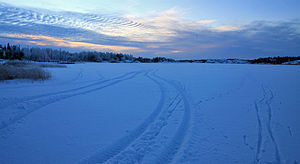 Frame Lake - Image: Tracks on frozen Frame Lake