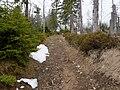 Trail near Sonnenkappe 12.jpg