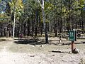 Trailhead, Trail 77, Gooseberry Trail, Cibola, National Forest - panoramio.jpg