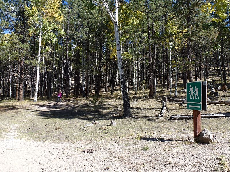 File:Trailhead, Trail 77, Gooseberry Trail, Cibola, National Forest - panoramio.jpg