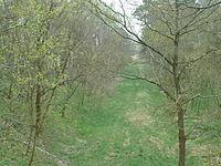 Trasse Eisenbahn Uckro - Dahme.JPG