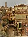 Treviso. 28.01.2020(12).jpg