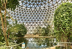 Tropical Display Dome, Brisbane Botanic Gardens, Mount Coot-tha 08.jpg
