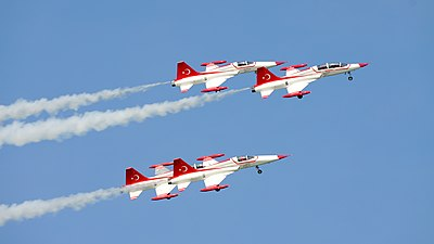 Turkish Stars 2434.JPG
