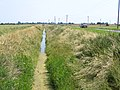 Twenty Foot Drain, Gosberton High Fen, Lincs - geograph.org.uk - 259136.jpg