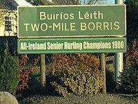 Two-Mile Borris sign 22-12-2006.jpg