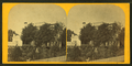 Two women talking in the garden, from Robert N. Dennis collection of stereoscopic views.png
