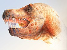 Restoration of a Tyrannosaurus with parasite infections. A 2009 study showed that holes in the skulls of several specimens might have been caused by ...