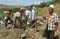 UNDP launches cash-for-work in Kyrgyzstan.jpg