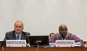 United Nations special rapporteur - Christof Heyns, former Special Rapporteur on extrajudicial, summary or arbitrary executions and Maina Kiai, former Special Rapporteur on the rights to freedom of peaceful assembly and of association (2015).