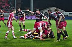 USO-Gloucester Rugby - 20141025 - Ruck 7.jpg