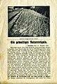 Uetersen Windhose 1925 03.jpg