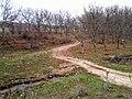Unnamed Road, Moldova - panoramio (420).jpg