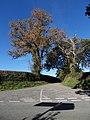 Uphill Junction - geograph.org.uk - 2128426.jpg