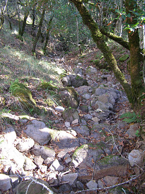 Yulupa Creek - Autumn view of dry tributary in headwaters area