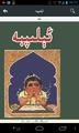 Uyghur ئېلىپبە.png