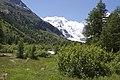 Vadret da Morteratsch - panoramio (32).jpg