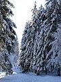 Val palot d'inverno (Pisogne) - panoramio.jpg