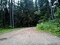 Valdaysky District, Novgorod Oblast, Russia - panoramio (463).jpg