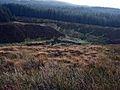 Valley of the Pilnyark Burn - geograph.org.uk - 263498.jpg