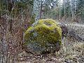 Vangusalu Dīnamarkas akmens 2002-10-27.jpg