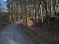 Velké Popovice-Dub, cesta k vesnici.jpg