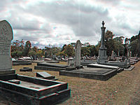 View of Waikumete Cemetery.jpg